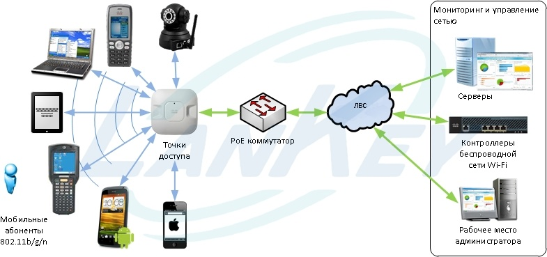Структура беспроводной сети